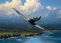 coastal patrol spitfire
