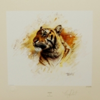 tiger(1)