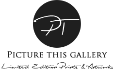 Picture This Gallery Logo